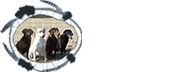 Black Partridge Kennel