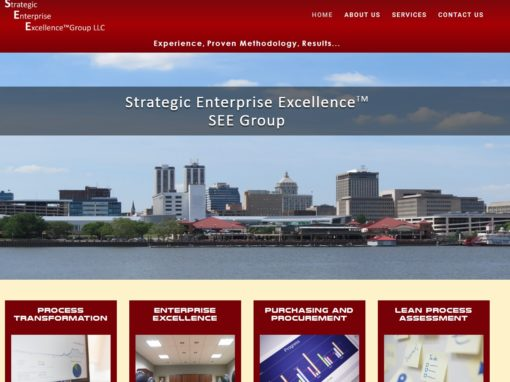 Strategic Enterprise Excellence Group LLC